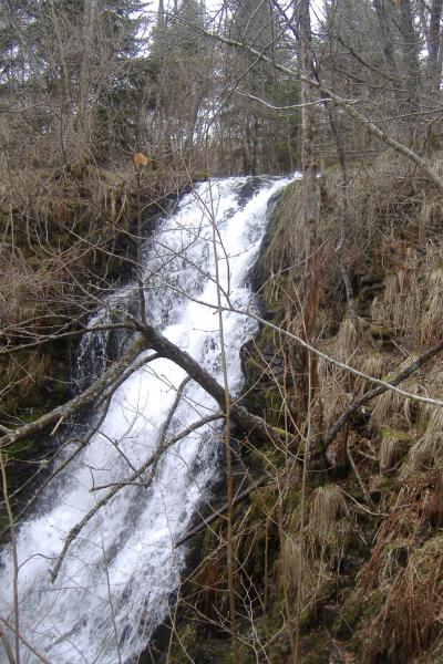 Cascade Bois du marilhou