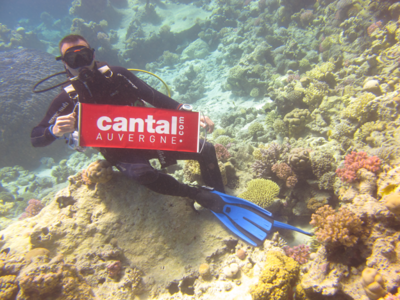 19 juin 2011, la marque Rouge dans un jardin de corail au large d�Hurghada en Mer Rouge.