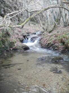 Le ruisseau d'Apcher traversant les gorges du même nom