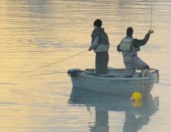 Carte de pêche : l'acheter sur internet