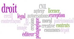Cours : droit d'auteur et droit à l'image (Ecole des Mines de Nantes)