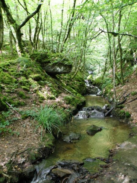 Vall�e du Marilhou Cr�dit : Thomas DARNIS
