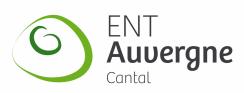 Les espaces numériques de travail ou environnement numérique de travail (ENT)