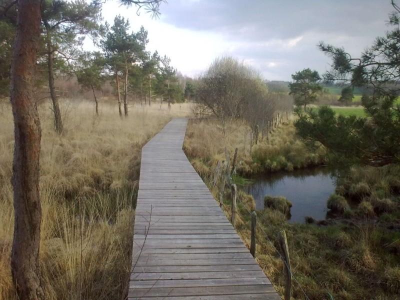 Le Marais du Cassan et ses aménagements Crédit : CD15-BBT