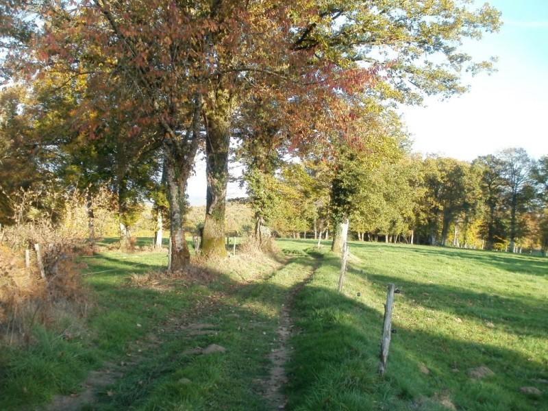 La via Arverna, chemin entre les hameaux de Labro et du Cassan, commune de Lacapelle-Viescamp,  Crédits : CD15-BBT