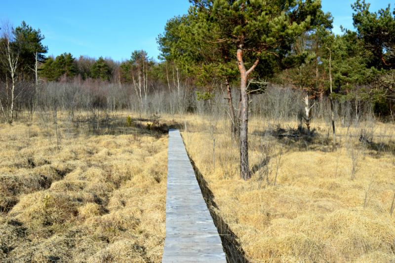 Le marais du Cassan et de Prentegarde, Crédit : cbeaudrey